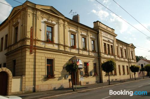 Apartment in Hradec Kralove in great location