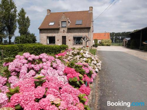 Apartment in Jabbeke with terrace