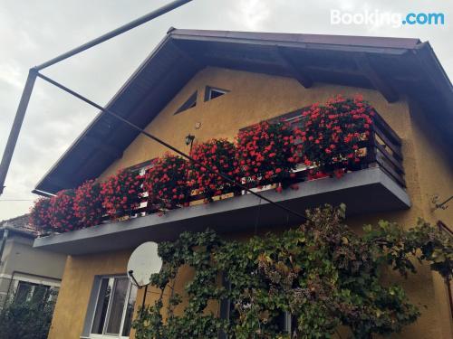 Apartamento con internet en Turda