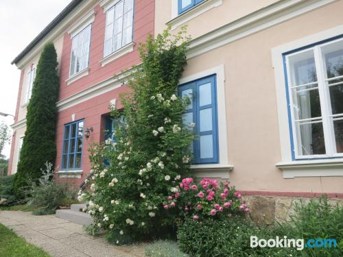 Spacious apartment in center. Reichenfels calling!